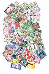50 different Zanzibar packet